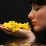 Ca sa te intelegi invata recunostinta si armonia